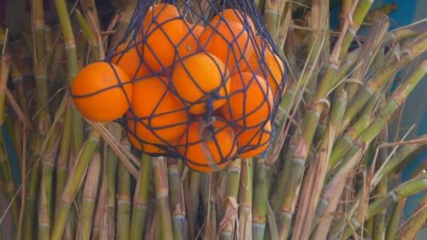 Cukornád és a narancs
