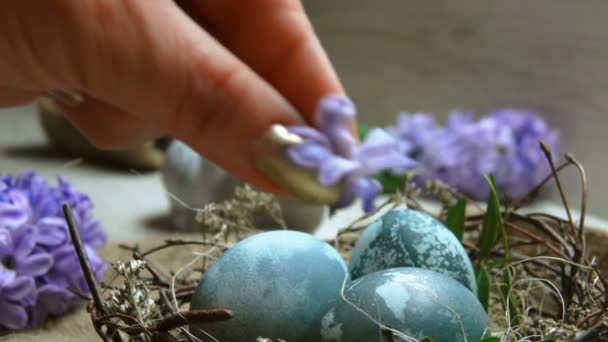 Hands díszítik húsvéti fészek Jácint virág
