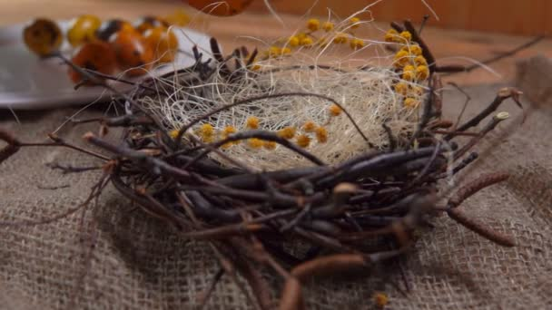 Yellow colored quail eggs are laid in the Easter nest