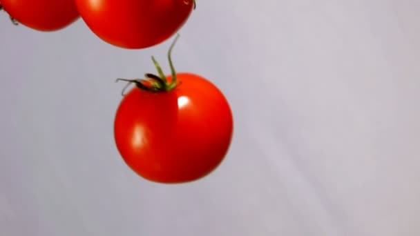 Tomatoes are falling down on on a white background