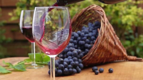 Wine is poured into glass on the background of dark purple grapes