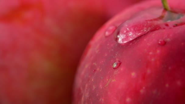 Super close-up of wet ripe red apple surface with water drop flowing down