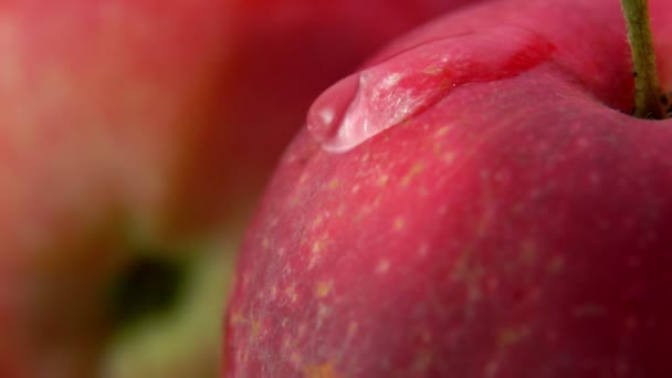 Close-up of wet red apple surface with water drop flowing down in slow motion