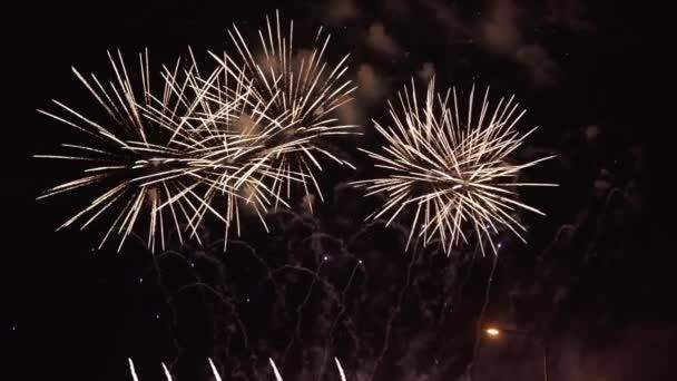 Nový rok oslava ohňostroje v noci v slo-mo s copyspace doprava
