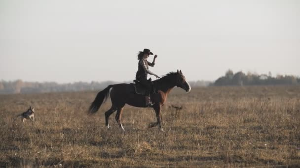 Krásná žena na koni při východu slunce v oboru. Cowgirl na hnědý kůň