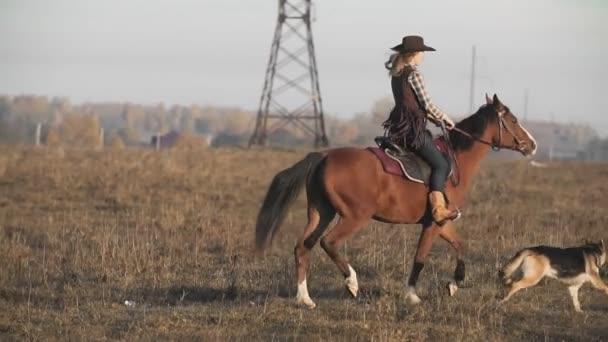 Krásná žena na koni při východu slunce. Mladí cowgirl na hnědé koně se psem v pomalém pohybu venku