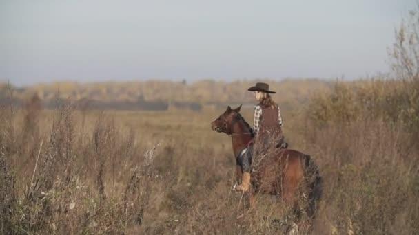 Mladí cowgirl na hnědé koně. Krásná žena na koni při východu slunce v poli.