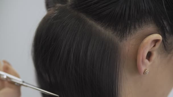 Hairdresser trimming brown hair with scissors. Stylist cutting womans hair