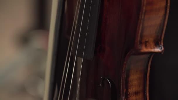 Nahaufnahme von Geigerhänden mit Geige
