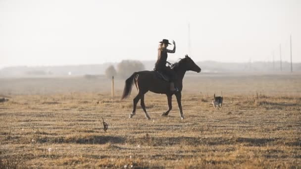 Krásná žena jezdila na koni se psem v terénu. Mladá kovbojku na koni