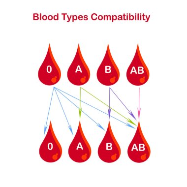 Blood types compatibility banner. Red blood drop 0, A, B, AB, arrows on white. Flat design stock vector illustration for education, for medical