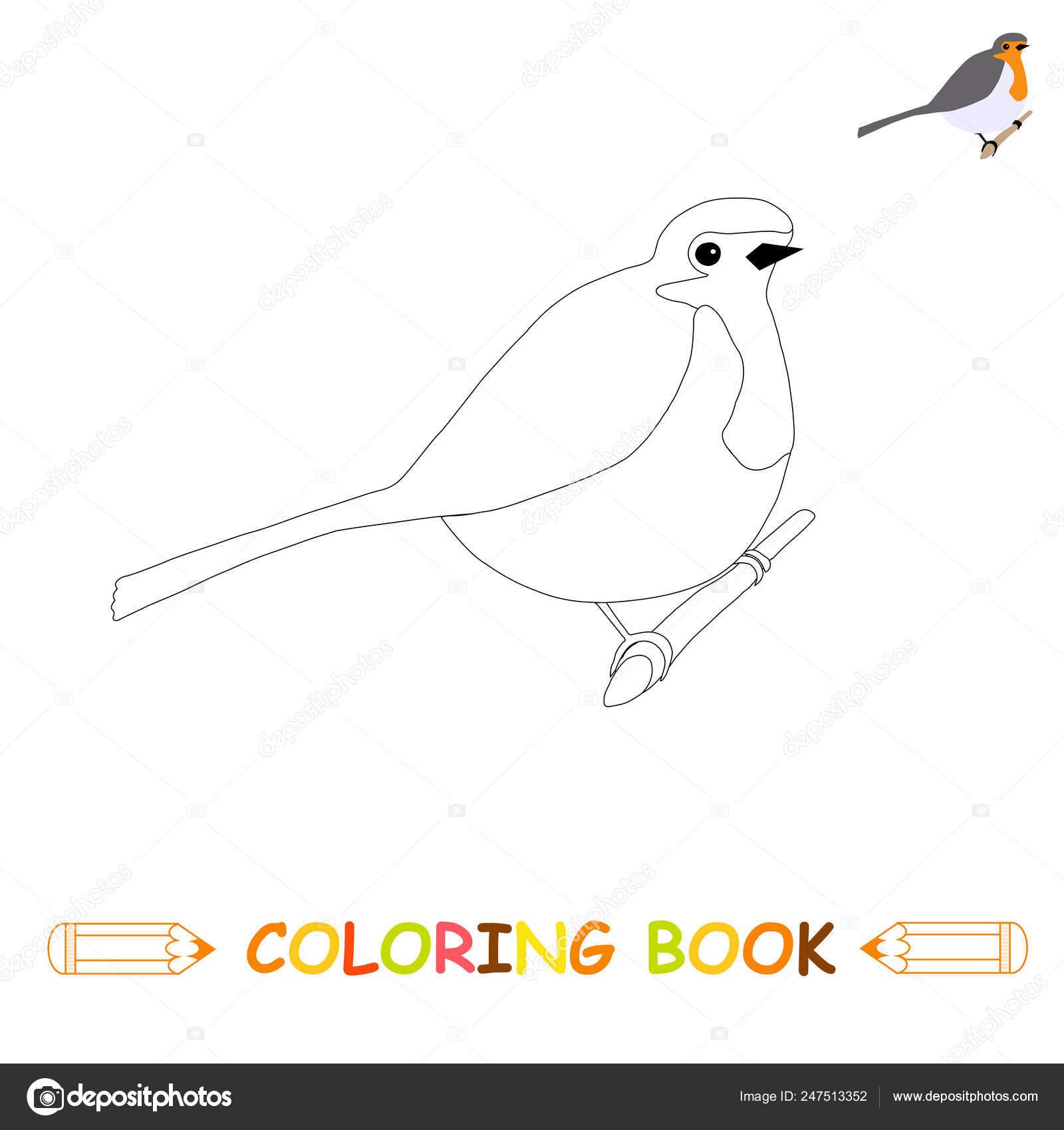 Sayfa Boyama Cocuk Resim Siyah Beyaz Renkli Versiyonu Kitap Boyama