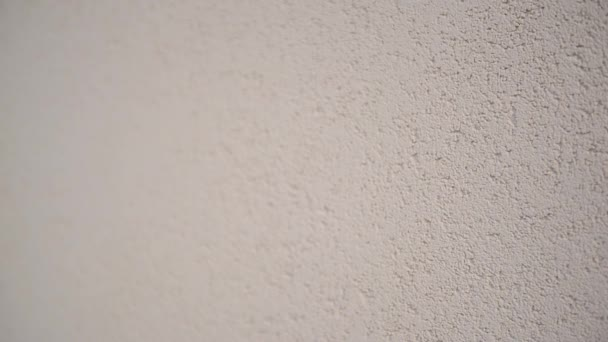 texture of the wall with gray handmade plaster