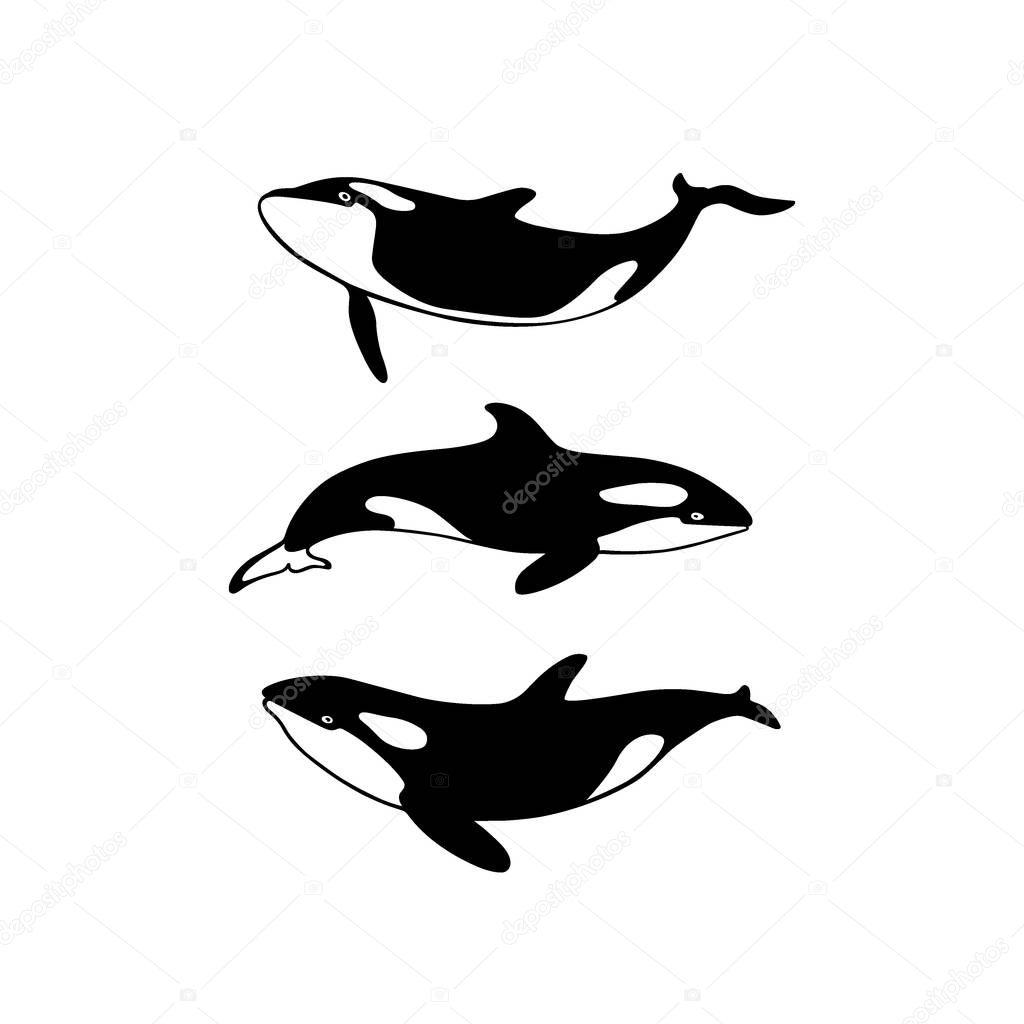 Hand drawn killer whales