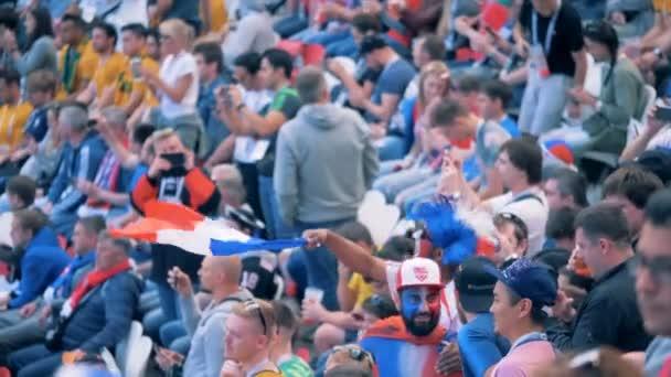 Kazan, RUSSIA - JUN 16, 2018: French fan with a flag celebrate a goal.