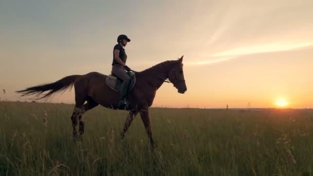 Žena na koni v poli, zblízka.