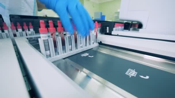 Test tubes with samples are getting put onto conveyor belt