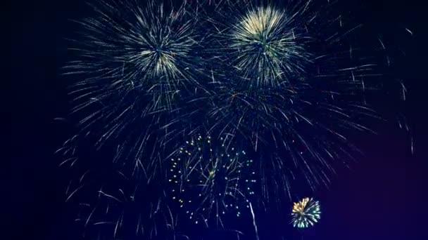 Spousta ohňostroje na oslavu.
