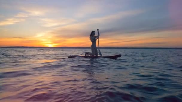Surfing woman is on a surfboard, floating on the water in the sunset.