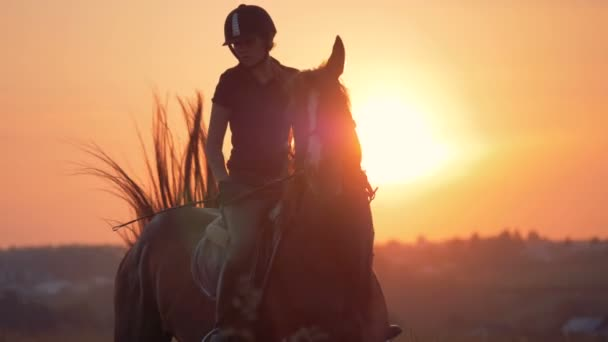 Female jockey is riding a brown horse during sunset