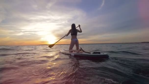 Paddleboarding session of an attractive young lady during sundown