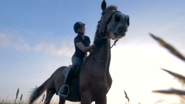 Žena sedí na koni ve venkovním prostředí, zavřít. Atletka jezdí na koni v poli.