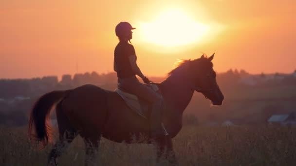 Nő lovagol egy lovat a területen, hát Nézd.