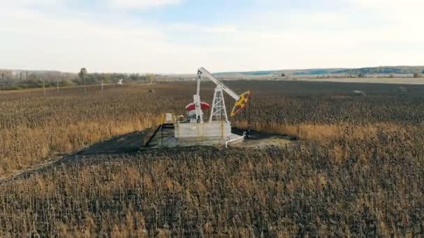 Oil pump near sunflower fields, top view. Damaged crop concept.