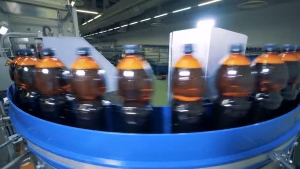Bierflaschen auf einem Förderband in einer Fabrik, aus nächster Nähe.
