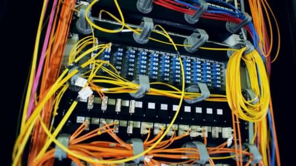 Mehrfarbige Drähte, die in Steckplätze von Computerservern gesteckt werden