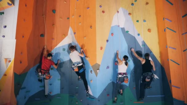 Training people in a climbing center, close up.