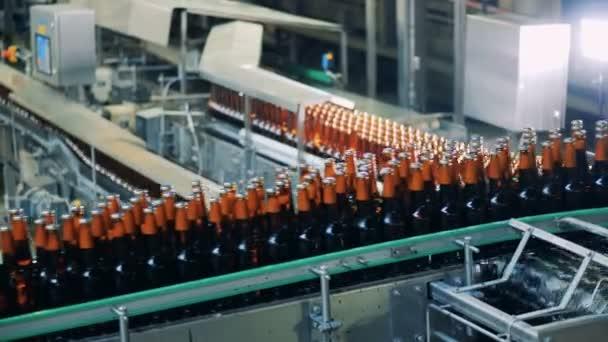 Zárt palack sör a sörgyár szállítószalag, zár-megjelöl.