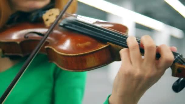 Hegedű és íj egy női zenész kezében