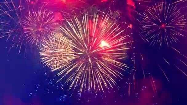 Bunte Feuerwerkskörper erhellen den Himmel