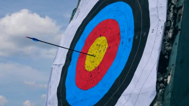 schwarzer Pfeil in die Mitte eines Ziels.