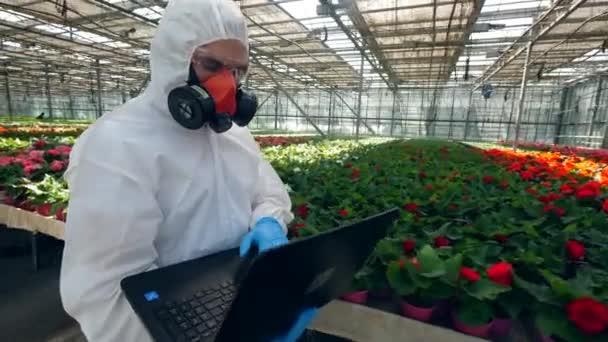 Egyik botanikusa sétál egy üvegcsappal, dolgozó laptop.