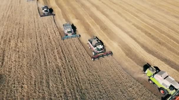 Many combine machines are reaping wheat in a top view