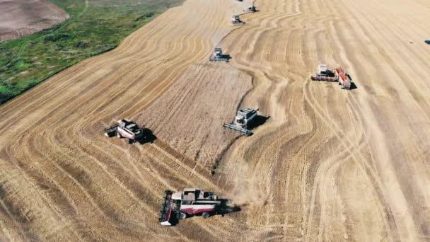 Kombinace se pohybují podél pole a používají pšenici