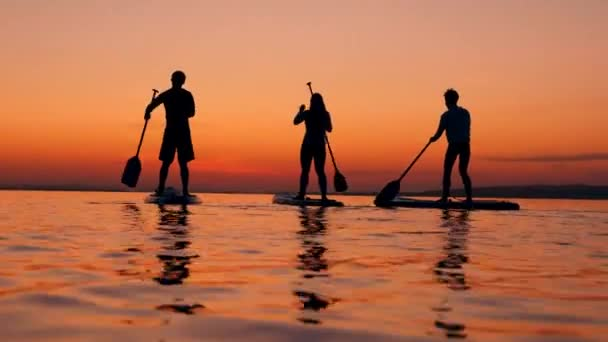 People surfing on paddleboards on sunset background.