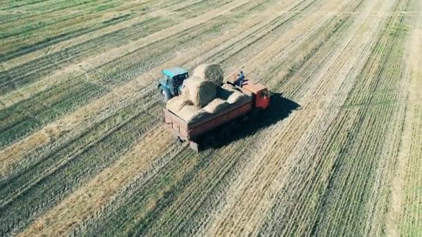 Zemědělské stroje sbírají hromady sena k jejich přepravě.