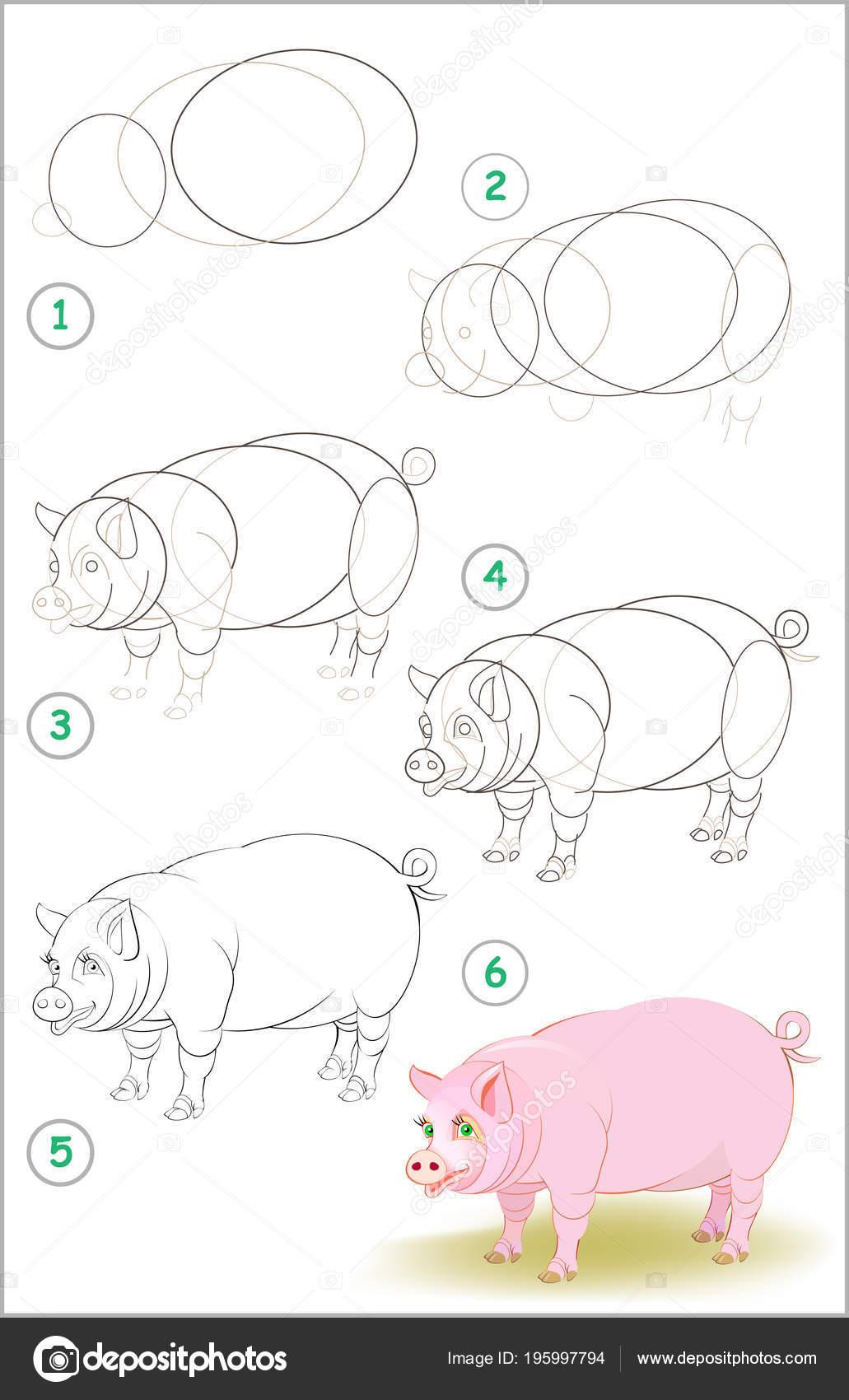 Página Muestra Cómo Aprender Paso Paso Para Dibujar Cerdo Lindo Imagen Vectorial De Nataljacernecka 195997794 Depositphotos