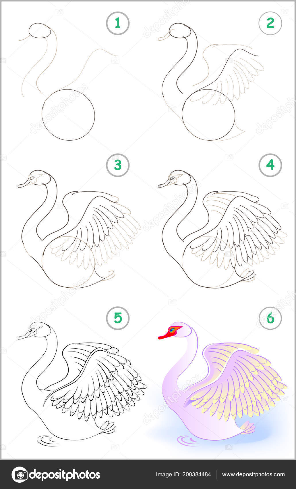 Página Muestra Cómo Aprender Paso Paso Dibujar Lindo Cisne