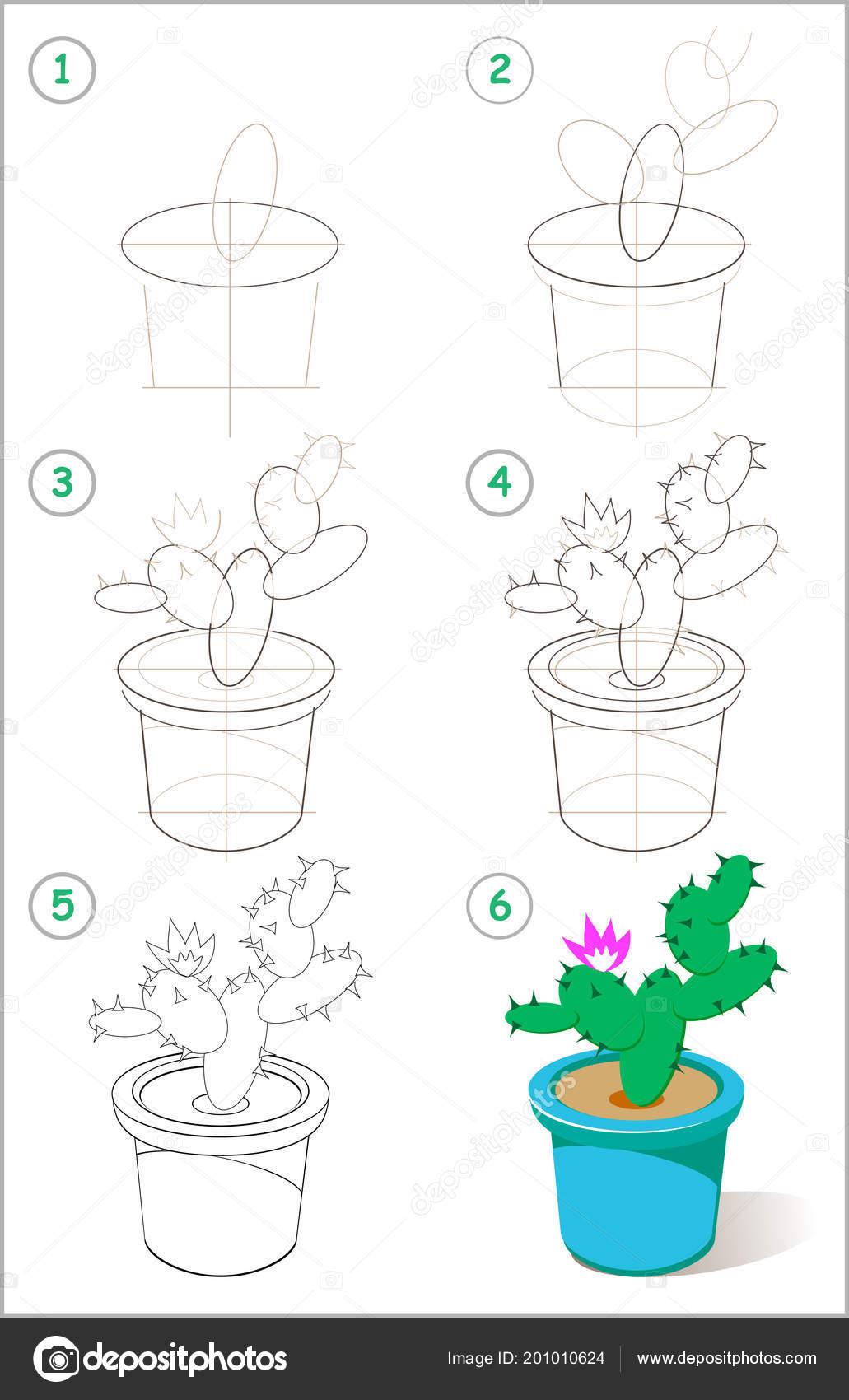 Pagina Mostra Come Imparare Passo Passo Disegnare Fioritura Cactus