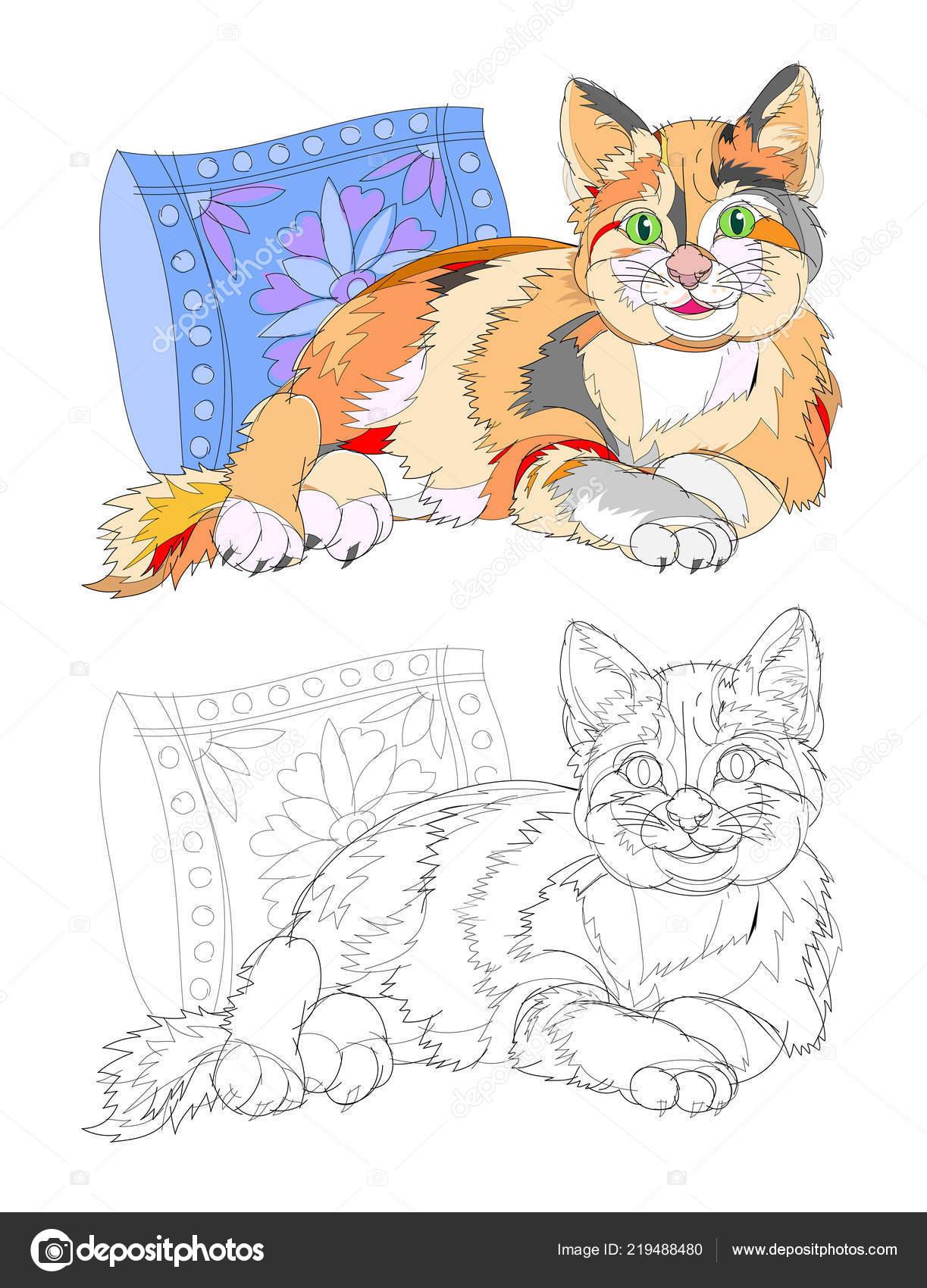 Illustration Fantaisie Chat Mignon Trouvant Pres Oreiller Page