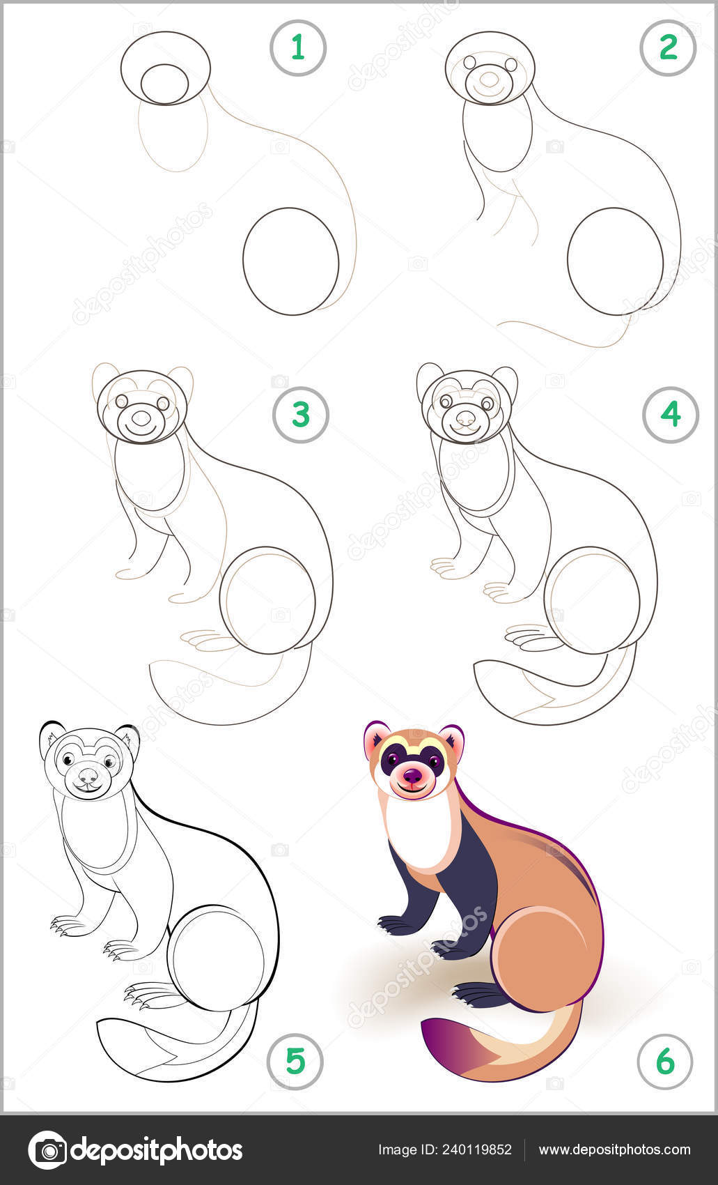 Educational page for kids shows how to learn step by step to draw a cute ferret back to school developing children skills for drawing and coloring