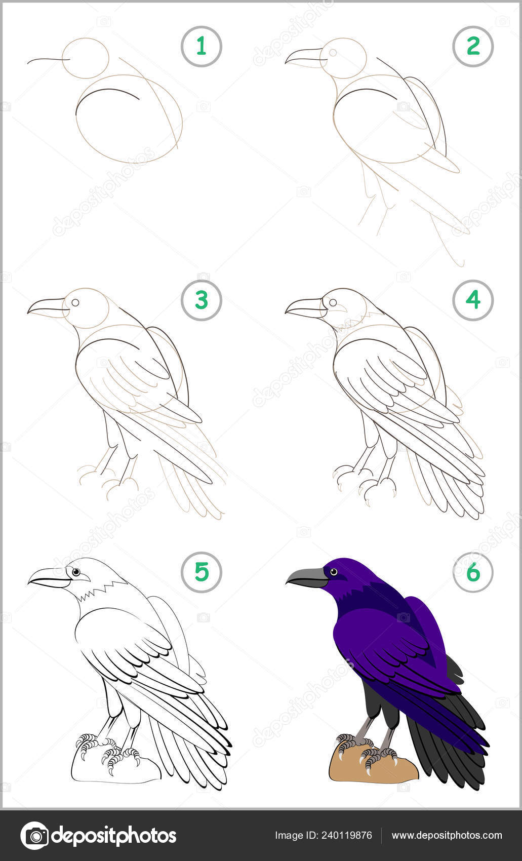 Cute raven drawing | Educational Page Kids Shows How Learn