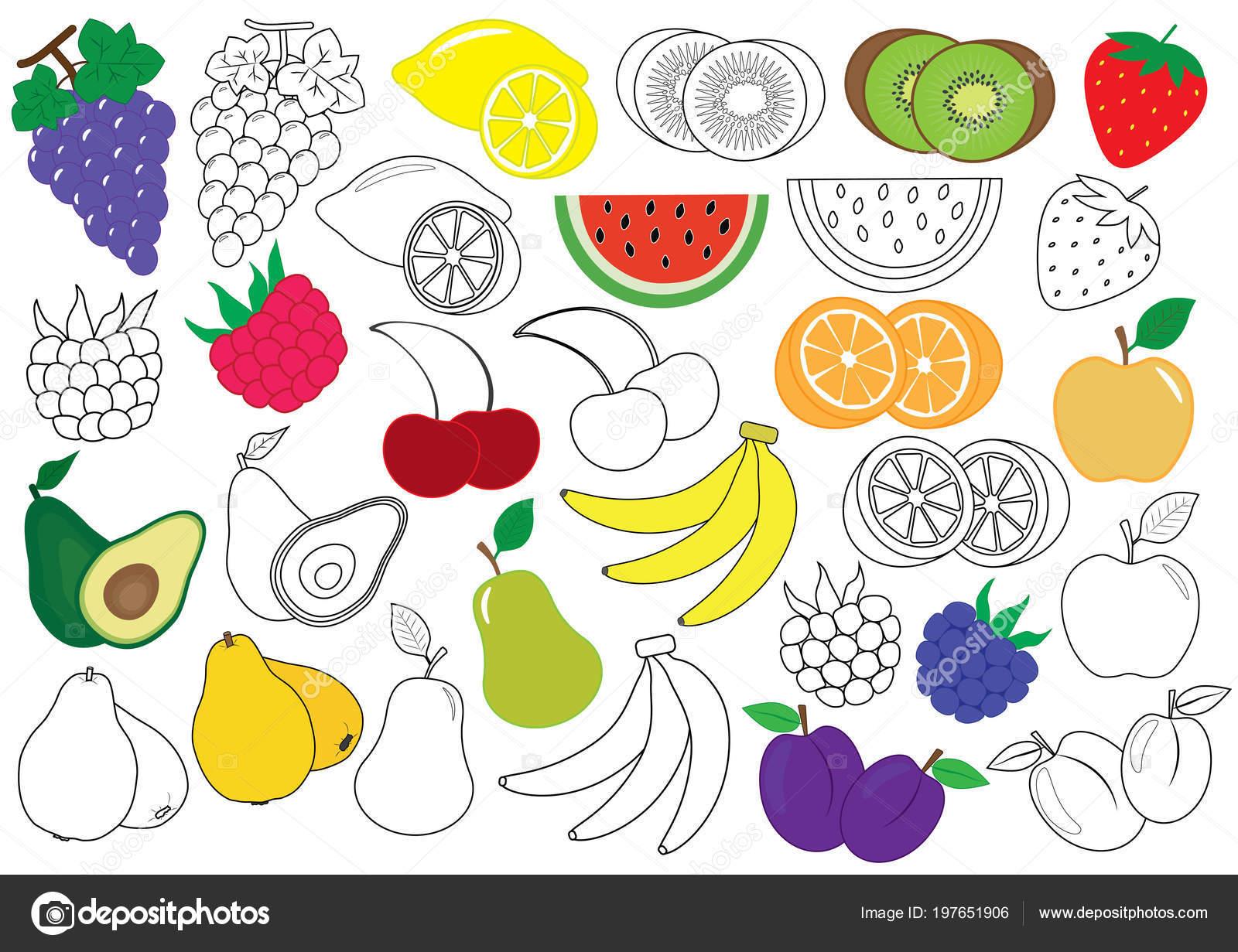 Meyve çilek Boyama Kitabı çocuklar Için Eğitici Bir Oyun Vektör