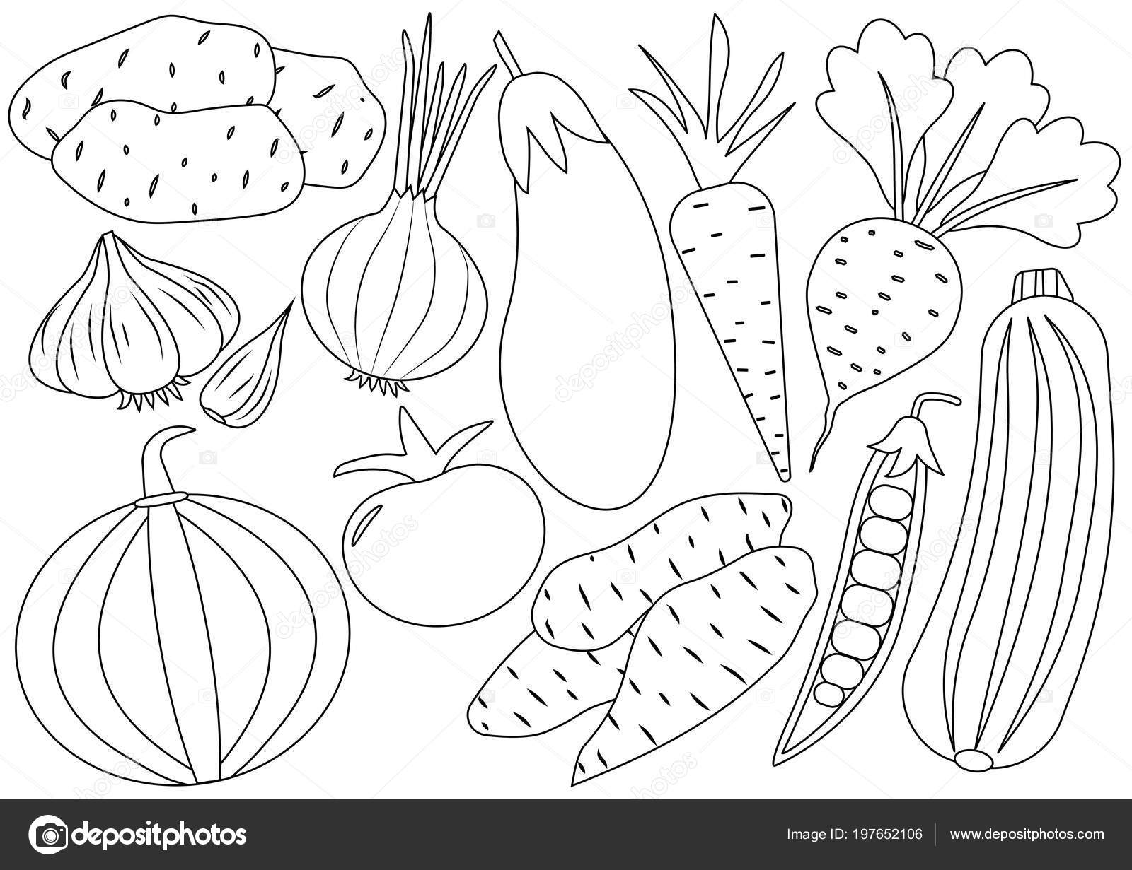 Vegetables Cartoon Set Icons Coloring Book Vector Illustration