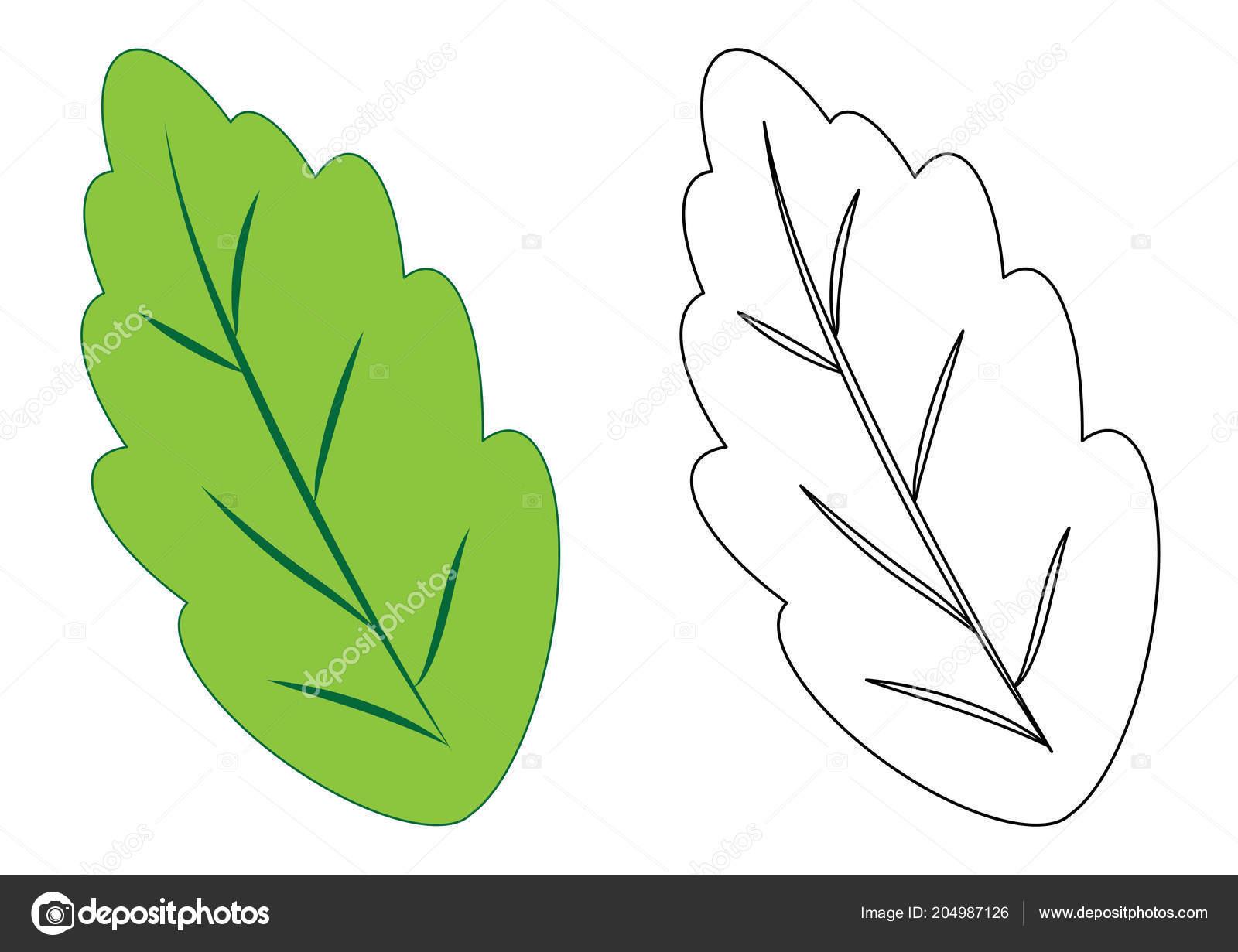 Foglia Pagina Colorare Gioco Bambini Illustrazione Vettore