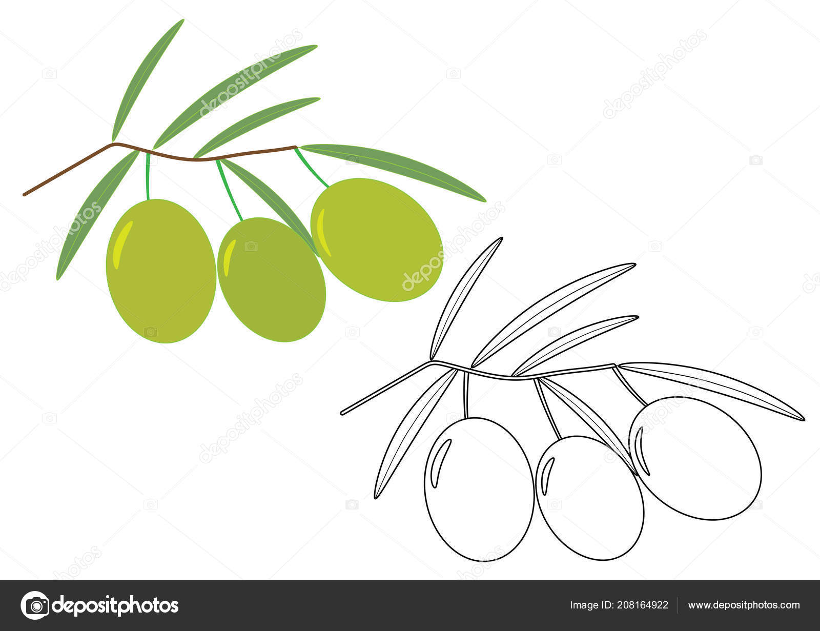 Olives Coloring Page Vector Illustration Stock Vector C Irusetka